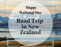 A ROAD TRIP THROUGH THE MARLBOROUGH SOUNDS, NEW ZEALAND (Happy Waitangi Day)